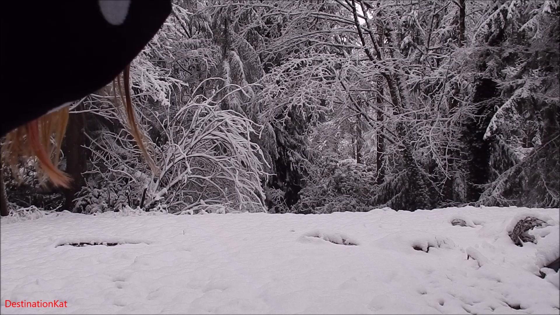 Destinationkat - Colored Snow
